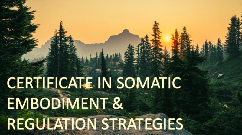 Certificate in Somatic Strategies - Level 2