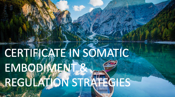 Certificate in Somatic Strategies - All Levels