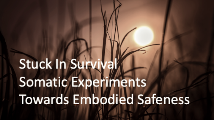 Stuck in Survival: Somatic Experiments Towards Embodied Safeness